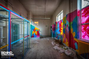 Holly Lodge, Liverpool - Bright coloured room