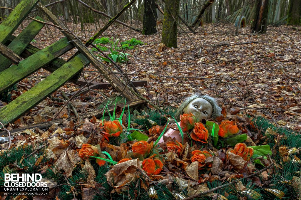 Chernobyl Nuclear Power Plant - A doll lies in a reef amongst the baron woodland