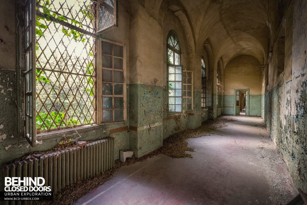 Manicomio di Racconigi - Peely paint and leaves in a corridor