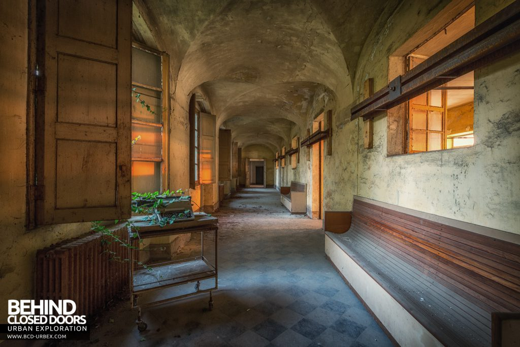 Manicomio di Racconigi - Typewriter entwined in vines in a corridor