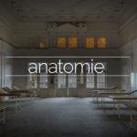 Haus der Anatomie – Physio School, Germany