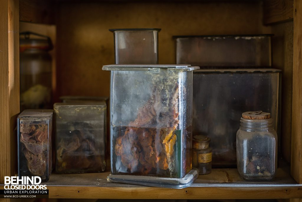 Twin Morgue, Belgium - Jars of human organs